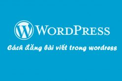 Cách đăng bài viết mới trong wordpress