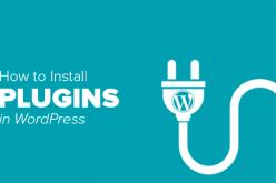 Hướng dẫn thêm gói mở rộng wordpress